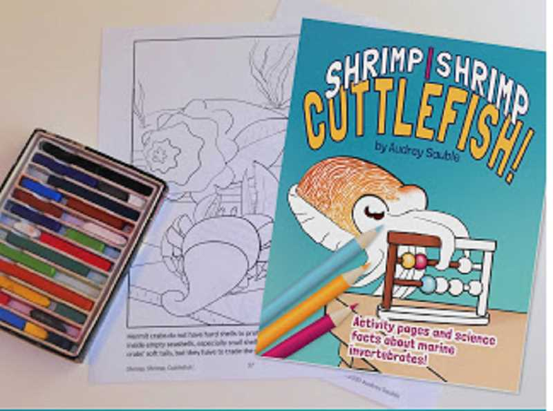 COURTESY PHOTO: AUDREY SAUBLE - Shrimp, Shrimp, Cuttlefish is the latest release from Audrey Sauble. The 62-page coloring and activity book is available through local book store Annie Blooms Books.