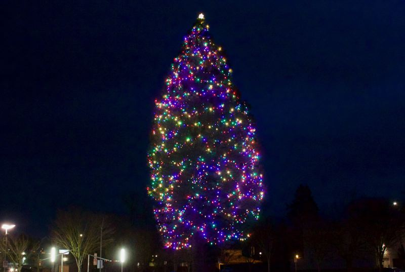 PMG PHOTO: CHRISTOPHER KEIZUR - The Gresham Christmas tree can be found in the Arts Plaza.