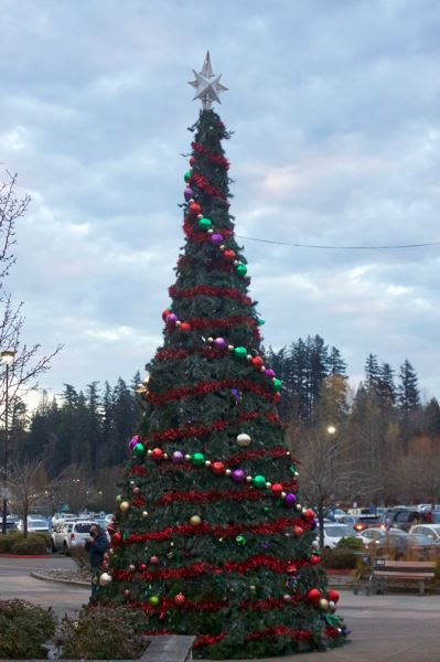 PMG PHOTO: CHRISTOPHER KEIZUR - Wood Villages Christmas tree is in the Wood Village Town Center shopping center.