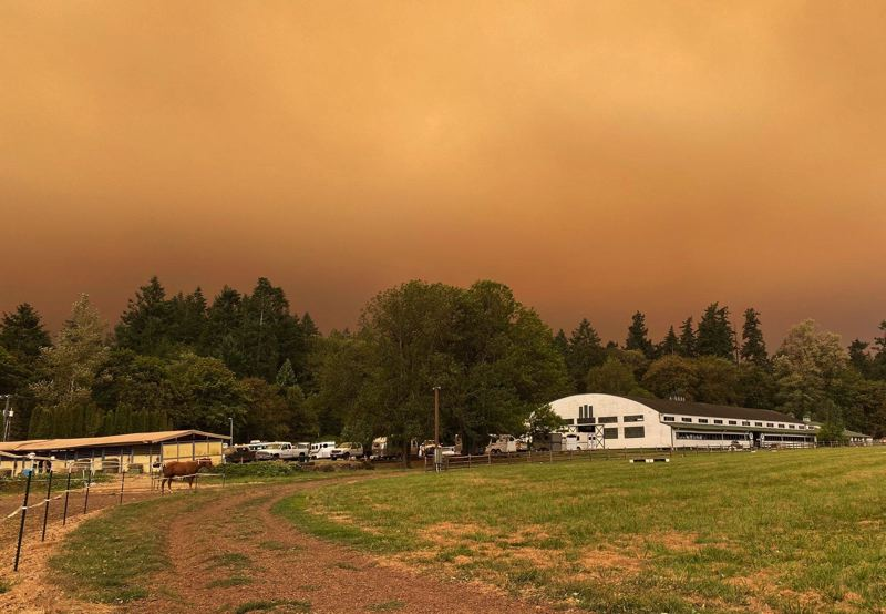 COURTESY PHOTO - Lake Oswego Hunt helped house the horses of people who were impacted by the local wildfires.