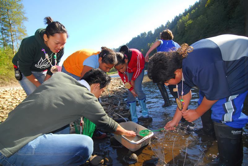 COURTESY PHOTO: MULTNOMAH COUNTY EDUCATION SERVICE DISTRICT  - Prior to the pandemic, students studied scienc in nature at Outdoor School  This year, the Multnomah Education Service District is sending kits for kids to use at home.