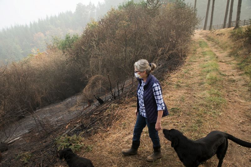 PMG PHOTO: JAIME VALDEZ - Lisa Roskopf observes a burned area from the top of a slope on the northwest side of her property near Henry Hagg Lake in September.