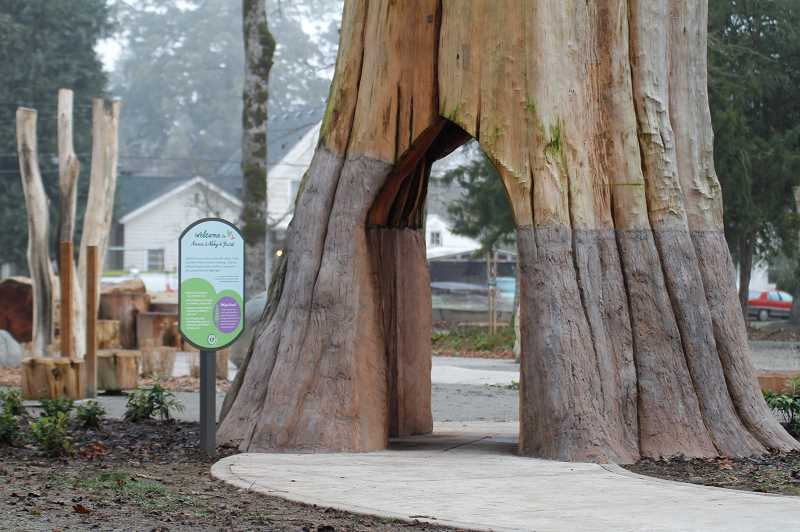 PMG PHOTO: WADE EVANSON - A giant Sequoia tree donated by the Fitzgerald family greets visitors to Anna and Abby's Yard in Rogers Park in Forest Grove.