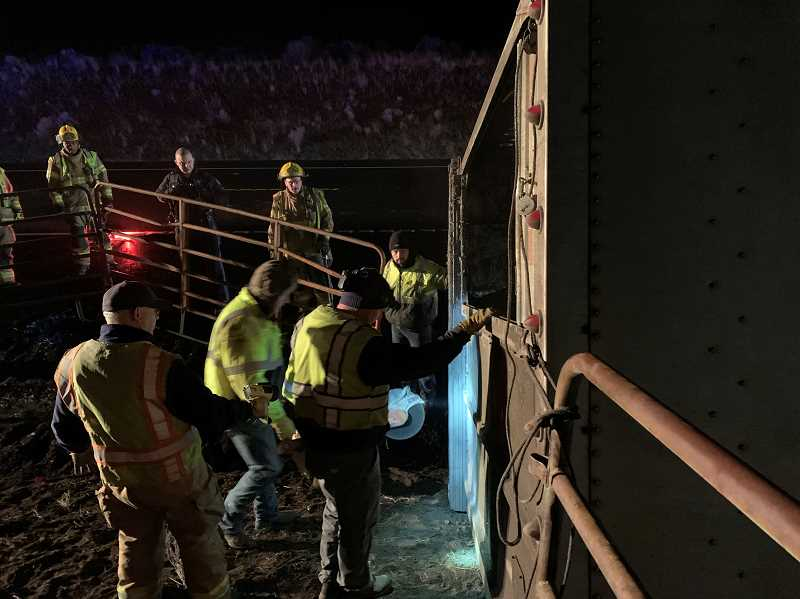 PHOTO COURTESY OF JEFFERSON COUNTY FIRE DISTRICT - Crews help cut dairy cows free from an overturned cattle truck early Thursday morning on Highway 97.