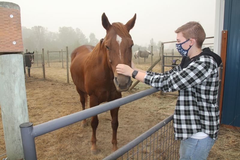 PMG PHOTO: JUSTIN MUCH - Gervais High School senior and FFA member Molly Taylor pets a rescued horse at the school grounds on Sept. 14. The new $500,000 endowment will help provide future generations of FFA students like Taylor with additional resources to pursue agricultural careers after high school.