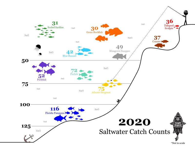COURTESY GRAPHIC: LUKE OVGARD - After spending a great deal of time in the Sunshine State, it's no surprise that Ovgard caught more Florida pompano than any other saltwater fish in 2020.