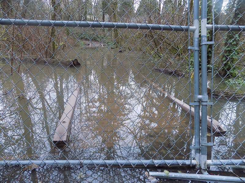 PMG PHOTO: RAY PITZ - A path boardwalk at Tualatin's Brown's Ferry Park was closed after it was covered with water from an overflowing Tualatin River.