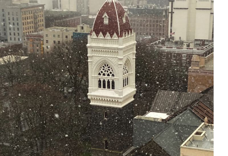 PMG PHOTO: DANA HAYNES - Flakes fell in downtown Portland on Jan. 26
