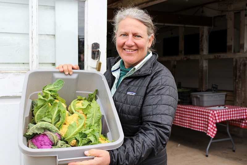 PMG FILE PHOTO: CLARA HOWELL - More community members are turning to Community Supported Agriculture, otherwise known as CSAs, in order to receive fresh vegetables, fruits, dairy and meat directly from local farms.