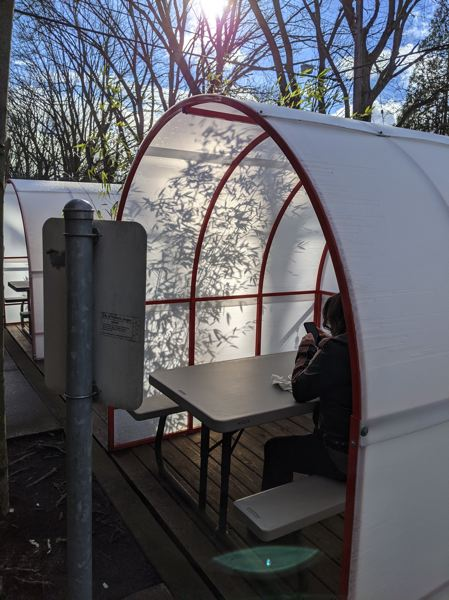 PAMPLIN MEDIA GROUP: JOSEPH GALLIVAN  - A diner at lunch inside Figure Plant's street dining pod, the Kose. At $1,300  each it is good for one to six people during the pandemic. After COVID-19 they may be reusable if PBOT continues to encourage dining in the right of way.