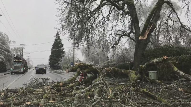 COURTESY PHOTO: KOIN 6 NEWS - Hundreds of thousands are without power because of the ice storm.