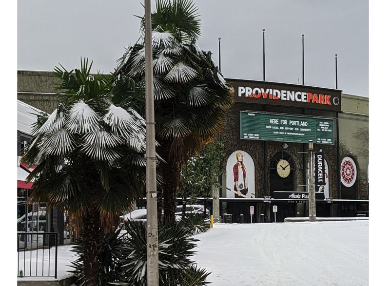 PMG PHOTO: JOESPH GALLIVAN - Providence Park got a taste of the white stuff too on Saturday, Feb. 13 in Portland.