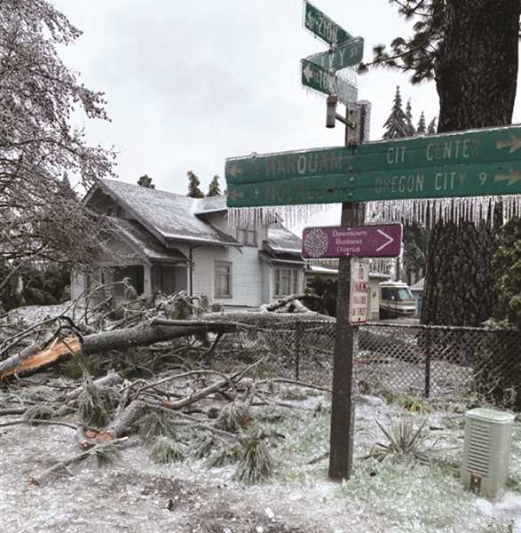 PMG PHOTO: KRISTEN WOHLERS - Evidence of the ice storm was everywhere in Molalla Saturday and Sunday, with downed tree limbs and ice-covered street signs.