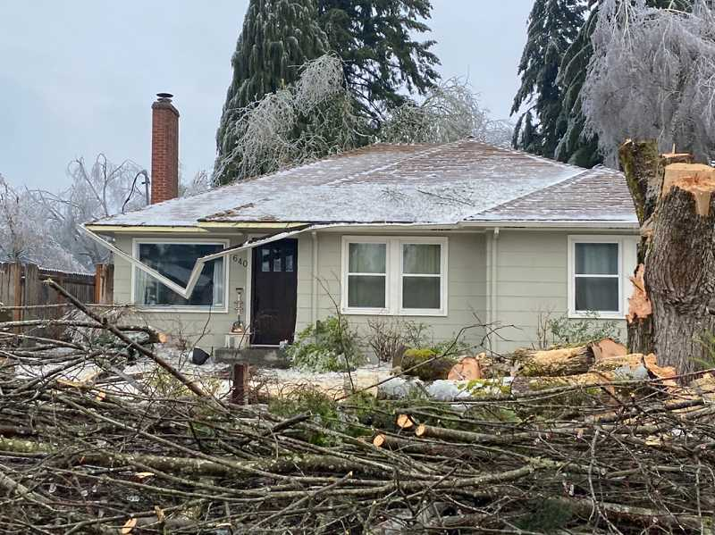 PMG PHOTO: KRISTEN WOHLERS - Some in Canby used chainsaws to chop trees and force them to fall in the desired direction, rather than causing home or car damage.