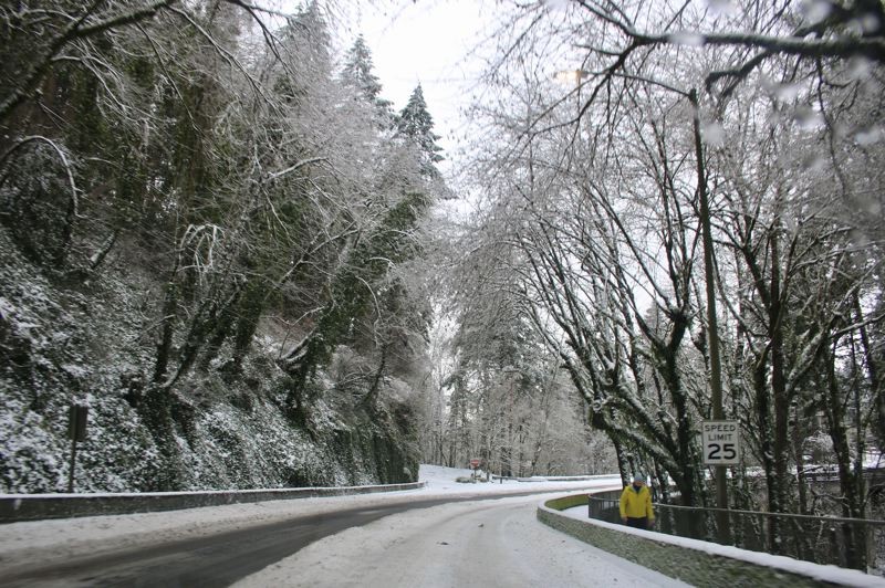 PMG PHOTO: BRIAN MONIHAN - A snow and ice storm over the weekend caused damage and power outages throughout Lake Oswego.