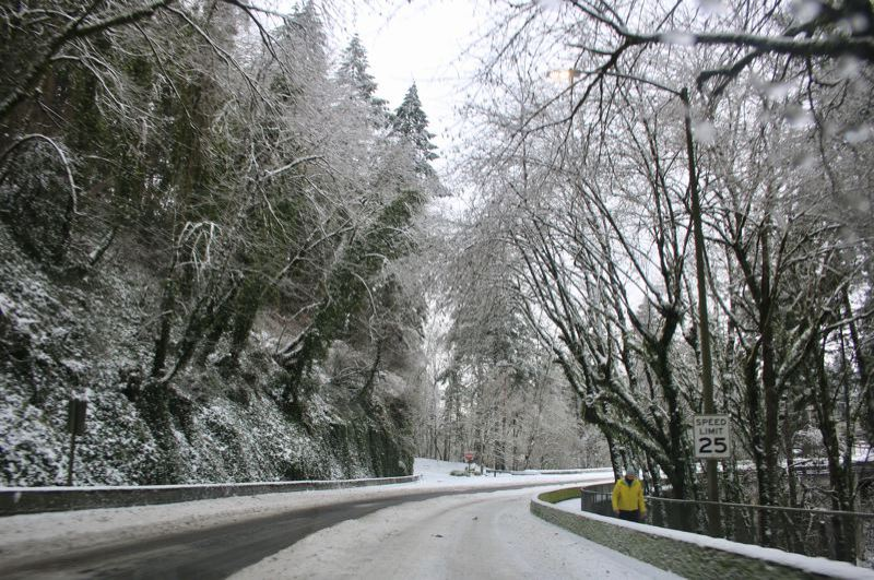 PMG FILE PHOTO - Thousands in Lake Oswego still remain without power due to the recent snowstorm.