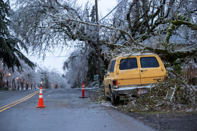 PMG PHOTO: JAIME VALDEZ - Icy tree branches snapped, damaging a yellow car parked in the Old Town area of Wilsonville on Sunday.