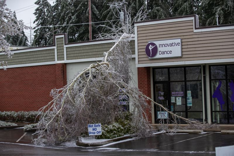 PMG PHOTO: JAIME VALDEZ - Icy tree branches fell across a dance studio in Wilsonville on Sunday, Feb. 21.