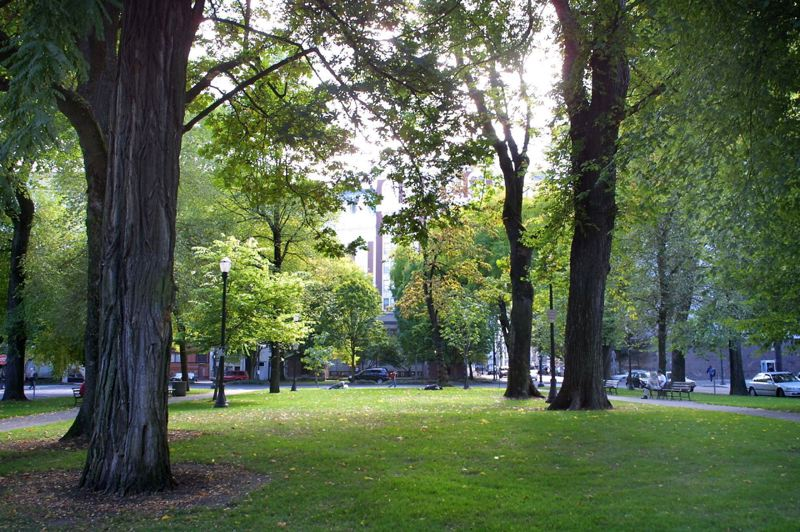 PMG FILE PHOTO - Portland's South Park Blocks could be nominated to the National Register of Historic Places Feb. 19. The nomination comes as the city is working on a new masterplan for the greenspace.