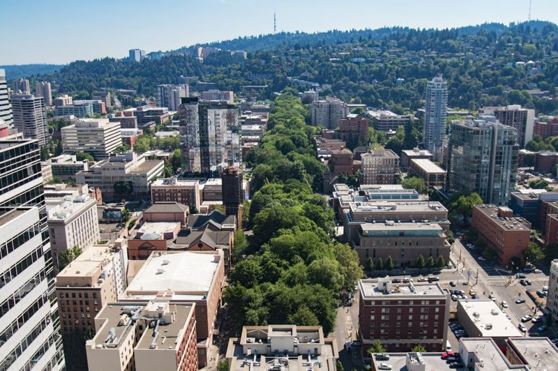 PMG FILE PHOTO - Members of the Downtown Neighborhood Association want to nominate the South Park Blocks to the National Register of Historic Places.