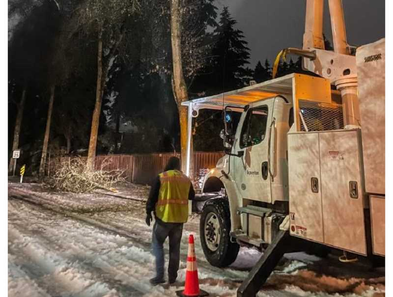 COURTESY PHOTO: CITY OF BEAVERTON - A Beaverton maintenance employee stands next to a downed tree. City officials say they received about 30 calls regarding damaged trees in the area.