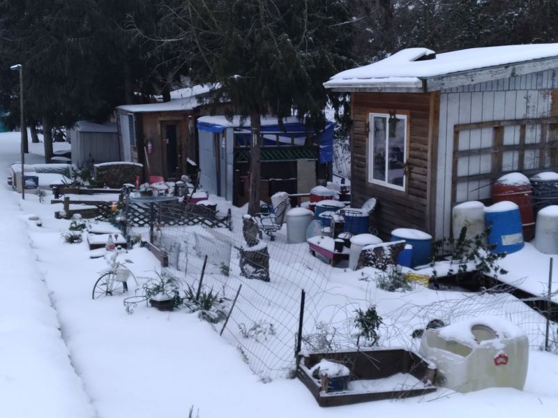 COURTESY PHOTO: BARBRA WEBER - Snow blanketed Hazelnut Grove Village in North Portland following a winter storm in mid February.