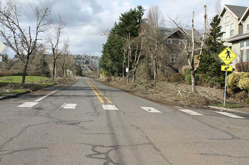 PMG PHOTO: HOLLY BARTHOLOMEW - Debris was cleared off Parker Road onto the sidewalks.