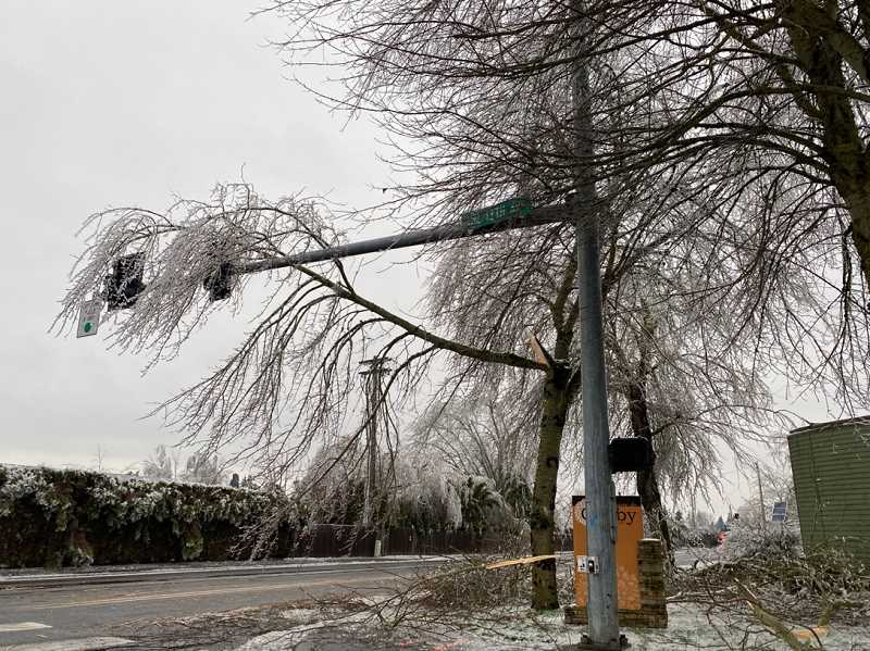 PMG PHOTO: KRISTEN WOHLERS - A tree limb, broken under the weight of ice, hangs over the traffic light at South 13th Avenue and South Ivy Street in Canby.