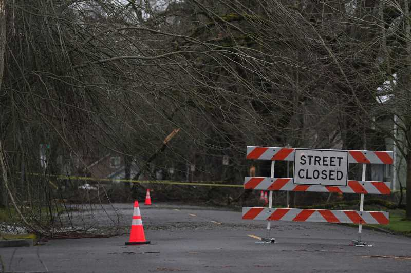 PMG PHOTO: PHIL HAWKINS - Second Street in Woodburn: fallen branches, trees and power lines due to ice and wind forced the closure of many streets and roads around the mid- and upper Willamette Valley this past week. The biggest part of the storm hit late Friday and early Saturday, Feb. 12-13.