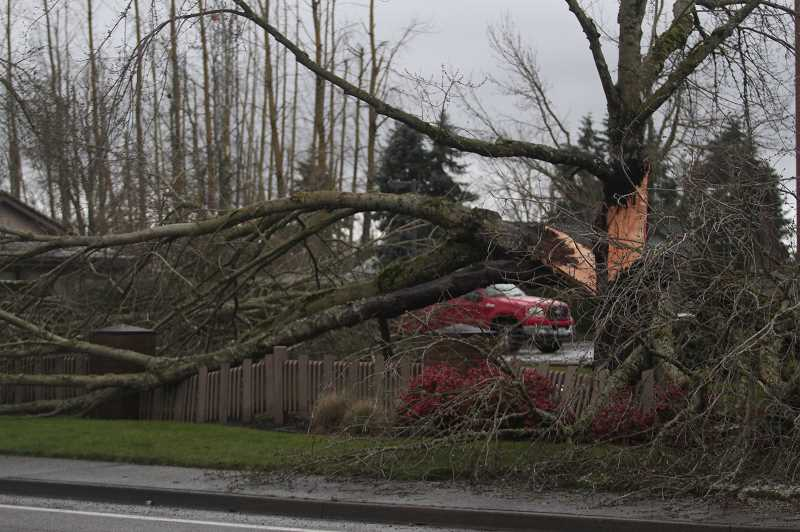 PMG PHOTO: PHIL HAWKINS - Ice and wind storms rendered heavy damage near the medical office buildings on the corner of Highway 211/214 and Fifth Street in Woodburn.
