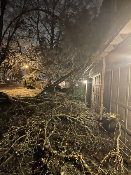 COURTESY PHOTO - Branches from a fallen tree covered Kimberlee Abrahamson's home in the Park at Merryfield neighborhood.