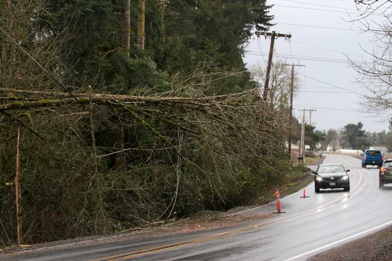 PMG PHOTO: PHIL HAWKINS - According to the PGE website, many customers could be without power for up to an additional eight days, meaning some residents would be without power for two weeks following the devastating ice storm on Feb. 12.
