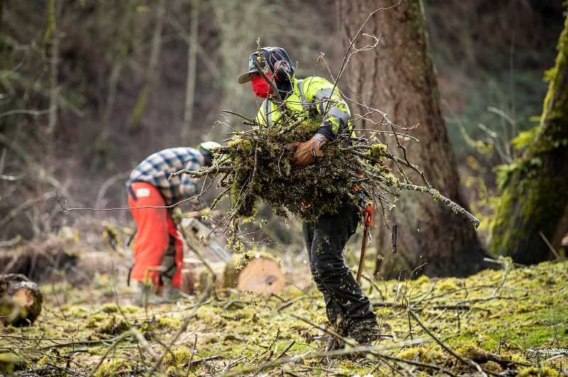 PMG PHOTO: JAIME VALDEZ - A worker removes branches and debris from Cook Park Feb. 19 as Tigard continues to clean up after the Feb. 12-14 snow and ice storms.