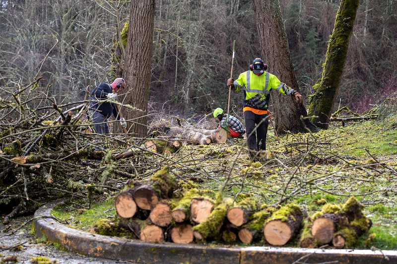 PMG PHOTO: JAIME VALDEZ - Officals in Tigard, Tualatin and Sherwood estimate it will take several weeks to clean up all the trees and branches scattered througout their cities following the Feb. 12-14 storms.