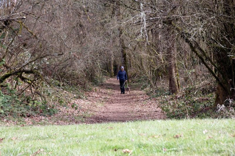 COURTESY PHOTO: OREGON STATE PARKS - A hiker walks their dog at Champoeg State Park, south of Newberg.