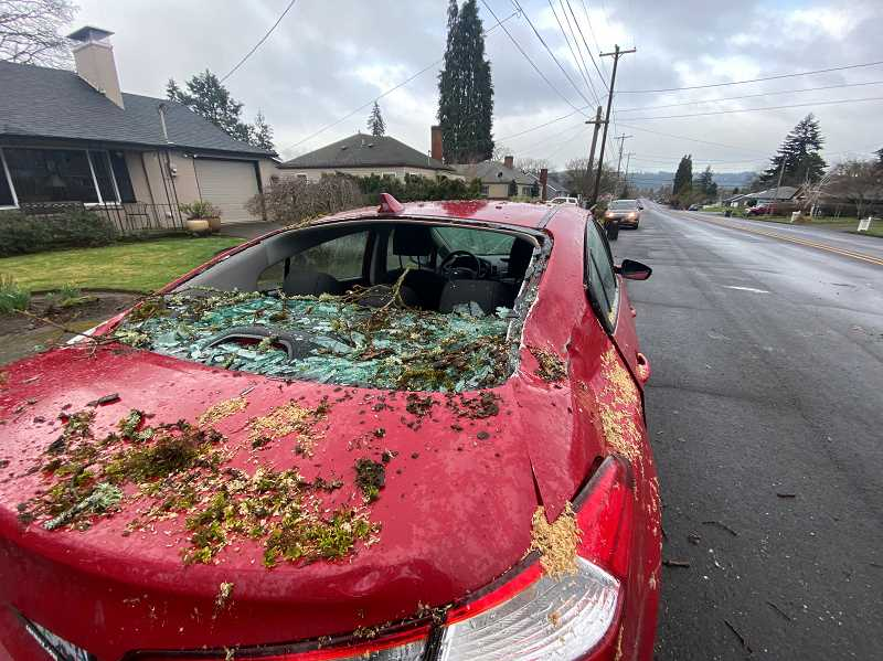 PHOTOS COURTESY: BRYCE COLSON - The great white oak took out a car and roof in Gladstone.