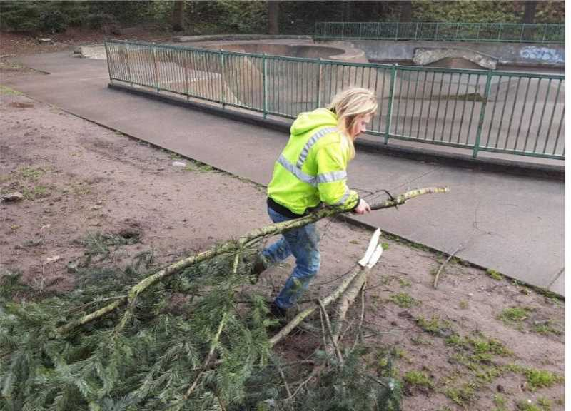 COURTESY PHOTO: AIDAN MCNIECE  - Joshua Beckham cleans up debris that fell during the February ice storm at Clackamette Park in Oregon City.