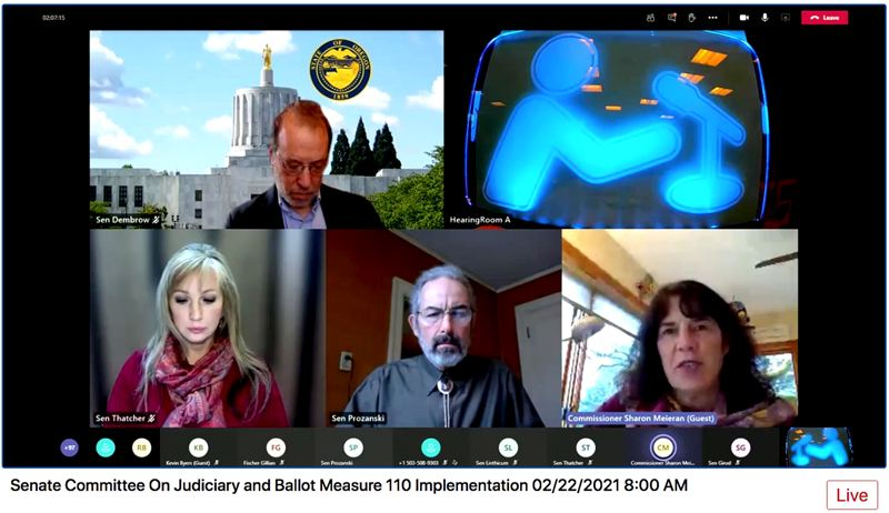 SCREENSHOT: OREGON LEGISLATURE - Multnomah County Commissioner Sharon Meieran, lower right, told the Senate committee that a proposal to ban concealed firearms from public buildings would make her feel safer as a public official.