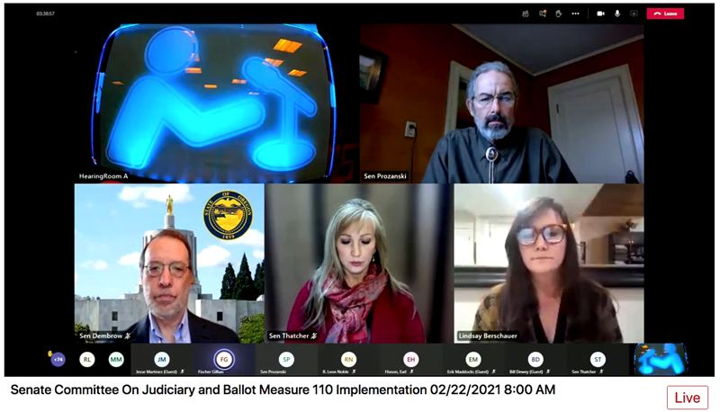 SCREENSHOT: OREGON LEGISLATURE - Yamhill County Commissioner Lindsay Berschauer told the Senate committee Monday, Feb. 22, that a gun law proposal would create a patchwork of gun-free zones. Berschauer has proposed making Yamhill County a 2nd Amendment sanctuary.