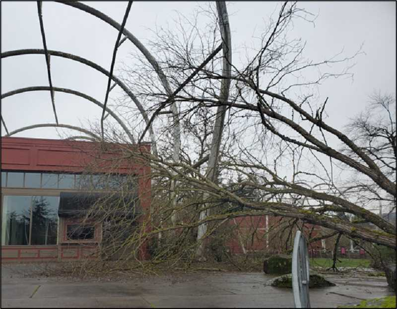 COURTESY PHOTO - Oregon City's End of the Oregon Trail Interpretive Center wagon hoops held up to falling trees from the ice storm.