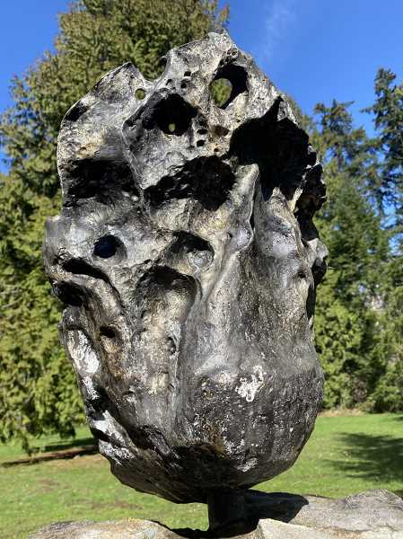 Willamette Meteorite restored after vandals paint it gold