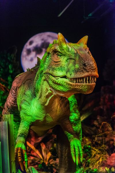 COURTESY PHOTO - An Allosaurus stands menacingly as part of the 'Dinosaurs Revealed' exhibit, which opens at OMSI March 20.
