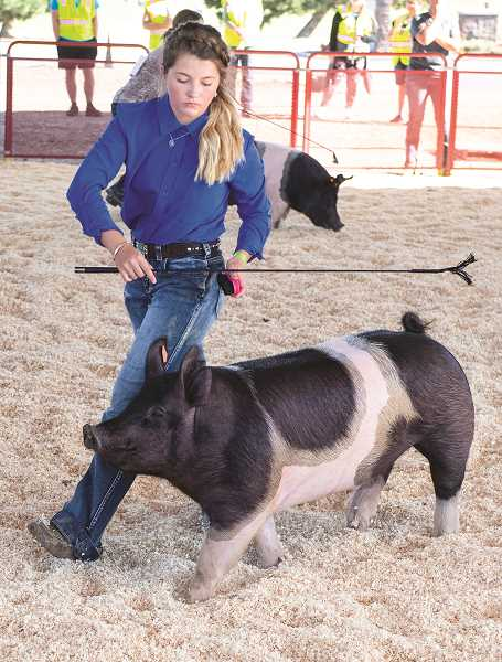 CENTRAL OREGONIAN - Youth from the FFA and 4-H clubs were still able to partipcate in the Crook County Fair, despite health-related restrictions.