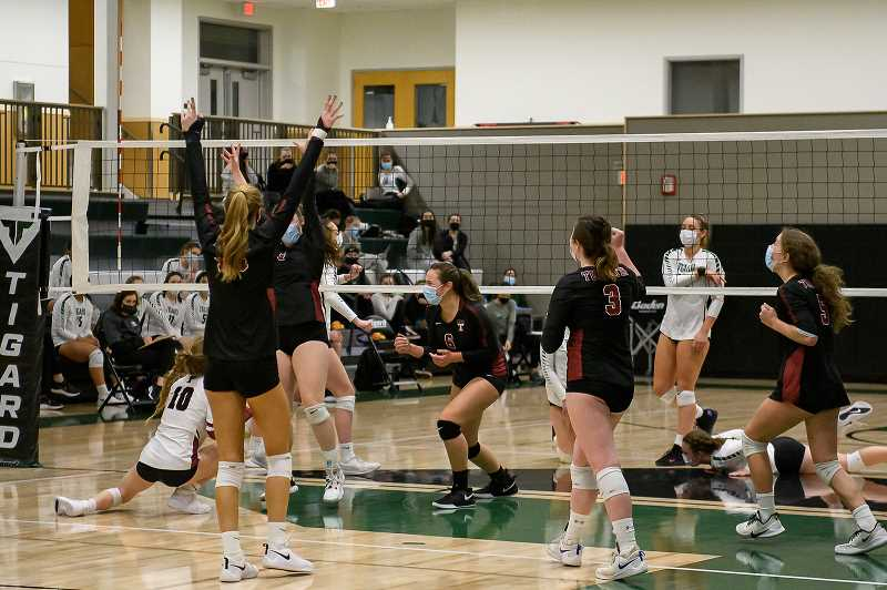 COURTESY PHOTO: CHRISTOPHER GERMANO - The Timberwolves celebrate after Tualatin's Olivia Jackson tipped for the kill against the Tigard Tigers Tuesday night. Tualatin beat Tigard 25-18, 25-17 and 25-8.