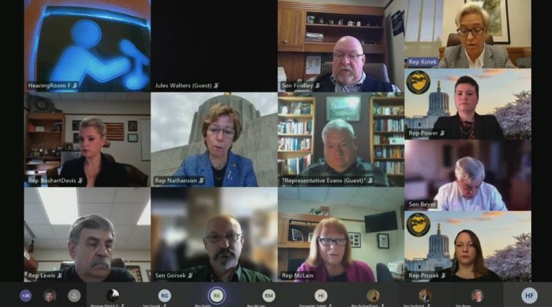 SCREENGRAB - Members of the Joint Committee on Transportation met virtually on March 16.