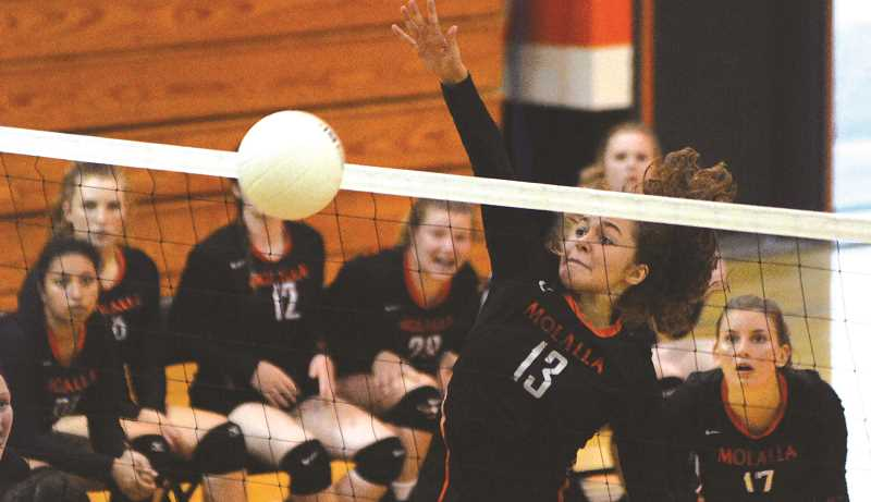 FILE PHOTO - The Molalla High volleyball team is coming off a two-win week.