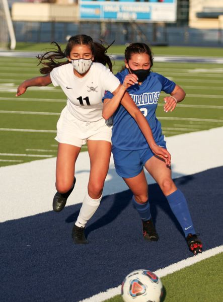 PMG PHOTO: PHIL HAWKINS - Woodburn sophomore Crystal Garcia challenges Crescent Valleys Charolette Patel for possession in the first half of the contest.