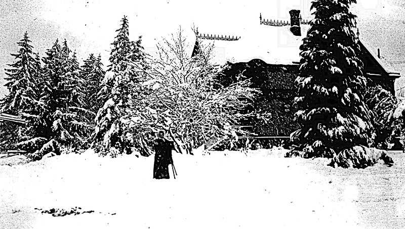 COURTESY SMILE HISTORY COMM., #SWHC195 - Heres an early photo of the 1895 Jasper and Anna Young house at 16th and Nehalem in Sellwood, which shared its lot with the Heritage Copper Beech - much younger and smaller, then. This was taken after a snow storm, around 1900, and also shows a number of large evergreen trees.
