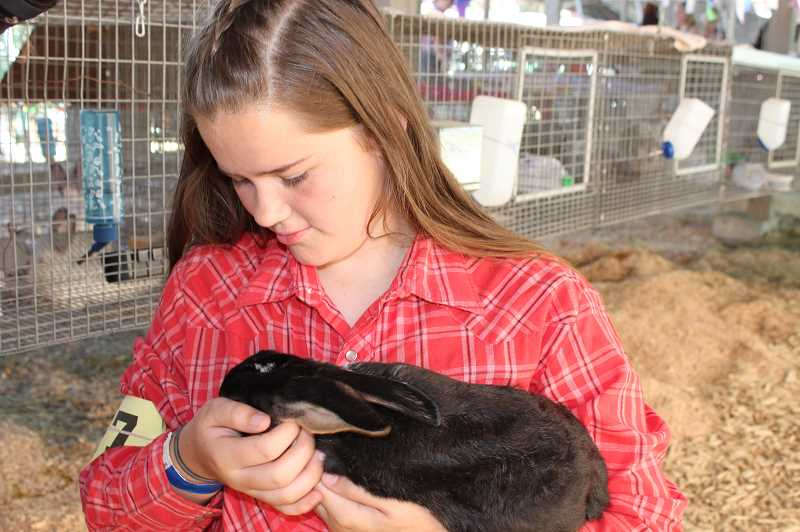 FILE PHOTO  - The 2021 fair will include the 4-H and FFA Youth Fair.