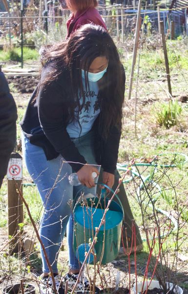PMG PHOTO: CHRISTOPER KEIZUR - Students from the Play, Grow, Learn program watering spring growth at Nadaka Nature Park.